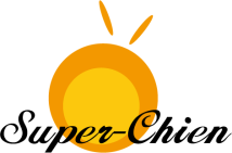 Super-Chien Technology Co., Ltd.